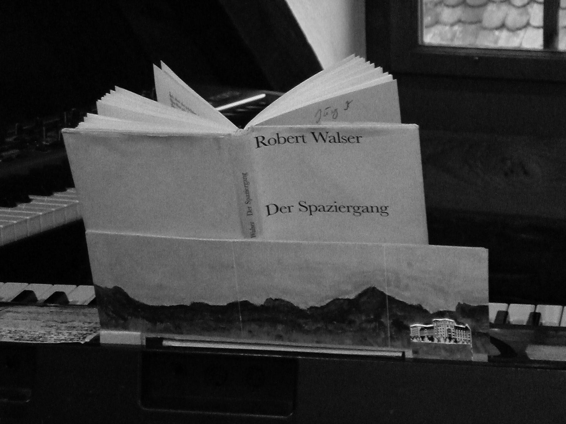 Kienberger Jaeggi Der Spaziergang Buch
